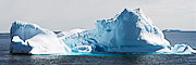 Picture 'Ant1_1_02583_02586 Chinstrap Penguin, Iceberg, Pygoscelis Antarcticus, Antarctica and sub-Antarctic islands, South Orkney'
